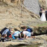 """""""砂浜ノート""""海岸ウオーキングでたくさんの発見!"""