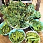 約50年余り無農薬、無化学肥料野菜と地元の野菜!